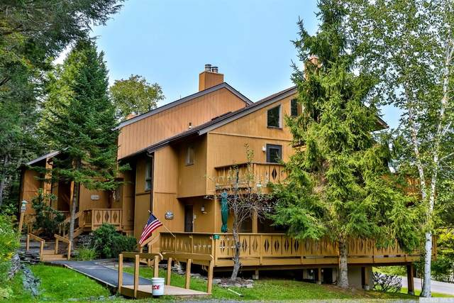 76 Hunter Drive K8, Hunter, NY 12442 (MLS #138398) :: Gabel Real Estate