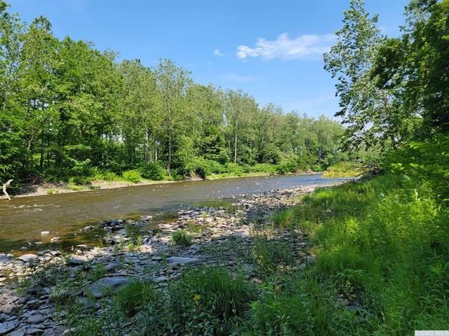 0 Off Indian Ridge Ext Road, Athens, NY 12015 (MLS #138439) :: Gabel Real Estate