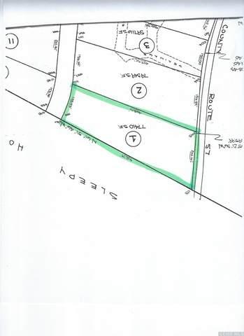 2310 Sleepy Hollow Road, Athens, NY 12015 (MLS #138470) :: Gabel Real Estate