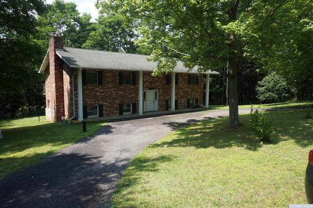 1193 County Route 67, Cairo, NY 12413 (MLS #138471) :: Gabel Real Estate