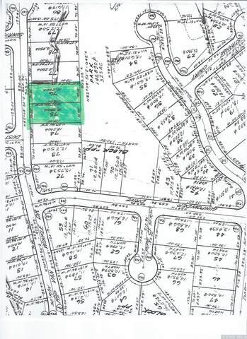 31 Rip Van Winkle Drive, Athens, NY 12015 (MLS #138473) :: Gabel Real Estate