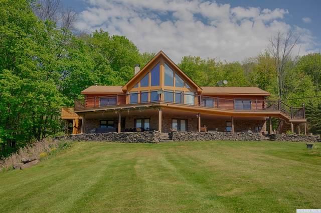 2475 Vega Mountain Road, Roxbury, NY 12474 (MLS #138478) :: Gabel Real Estate
