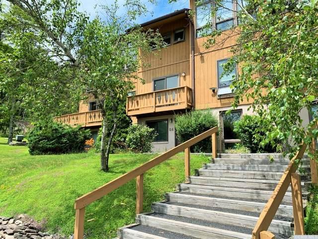 142 Hunter Drive Q6, Hunter, NY 12442 (MLS #138481) :: Gabel Real Estate