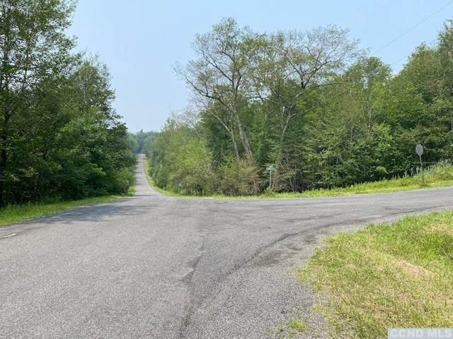120 West Hill Road, Austerlitz, NY 12017 (MLS #138502) :: Gabel Real Estate