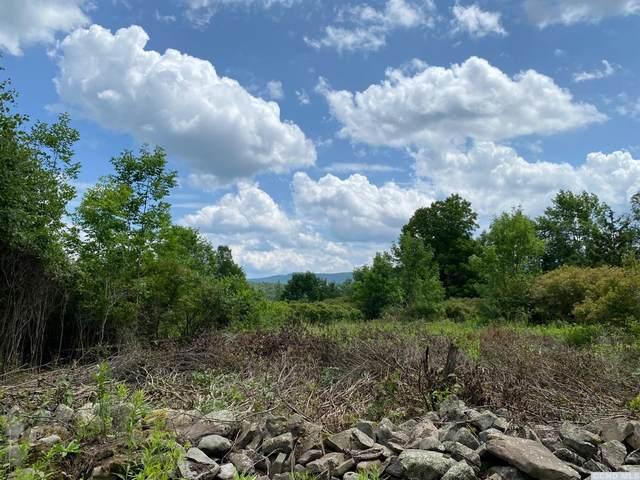 0 Wood Road, Conesville, NY 12076 (MLS #138508) :: Gabel Real Estate