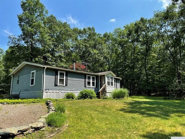 584 Potic Mountain Rd, Athens, NY 12015 (MLS #138524) :: Gabel Real Estate