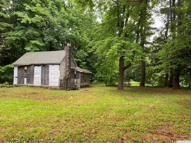 30 Ukraine Road, Jewett, NY 12444 (MLS #138527) :: Gabel Real Estate