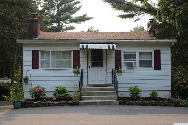 106 Cairo Junction Road, Catskill, NY 12414 (MLS #138557) :: Gabel Real Estate