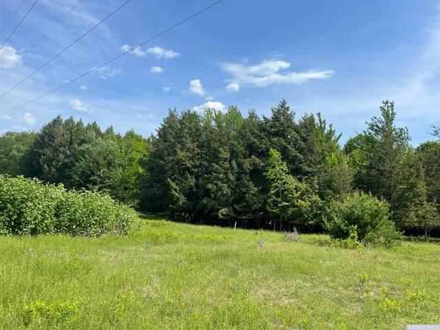 0 Deer Run, Ashland, NY 12496 (MLS #138564) :: Gabel Real Estate