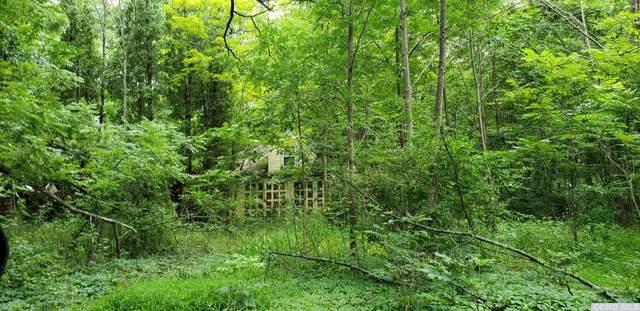 201 Joseph Chadderdon Road, Round Top, NY 12473 (MLS #138575) :: Gabel Real Estate