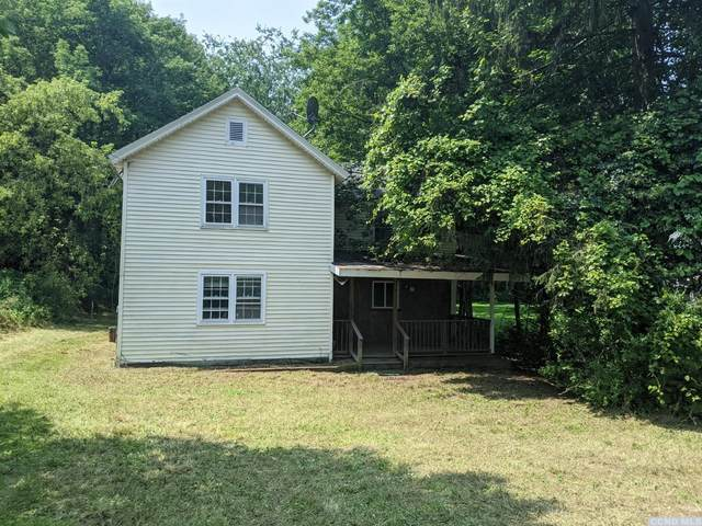9433 State Route 32, Greenville, NY 12431 (MLS #138640) :: Gabel Real Estate