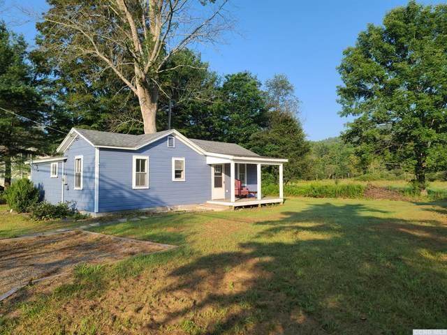 10129 State Rte 22, Hillsdale, NY 12529 (MLS #138828) :: Gabel Real Estate