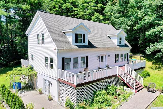 272 Canniff Road, Cairo, NY 12413 (MLS #138898) :: Gabel Real Estate