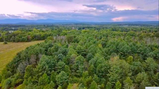 0 Rt. 385, Coxsackie, NY 12051 (MLS #138923) :: Gabel Real Estate
