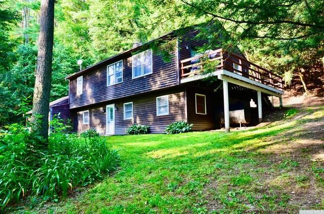60 Lower Hemlock Way, Stephentown, NY 12168 (MLS #139043) :: Gabel Real Estate