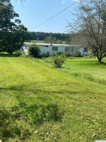 185 Hunt Road, Hillsdale, NY 12529 (MLS #139048) :: Gabel Real Estate
