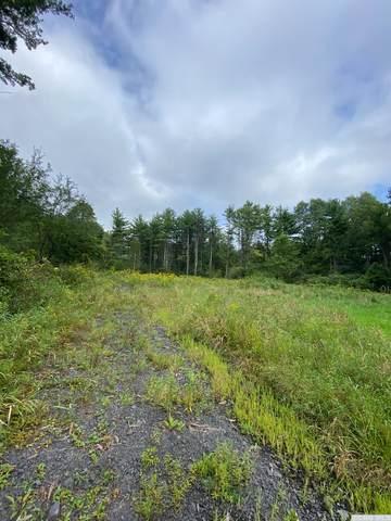0 Devan Rd, Greenville, NY 12083 (MLS #139051) :: Gabel Real Estate