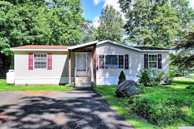 35 Susan Lane #13, Cairo, NY 12482 (MLS #139226) :: Gabel Real Estate