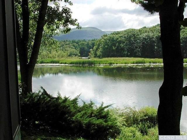 0 Lake View, Copake, NY 12516 (MLS #139228) :: Gabel Real Estate