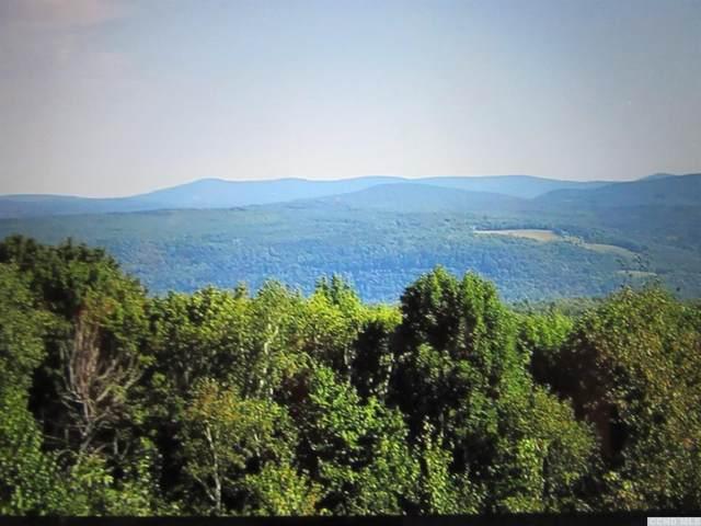 1 Beshroner Road, Prattsville, NY 12468 (MLS #139236) :: Gabel Real Estate