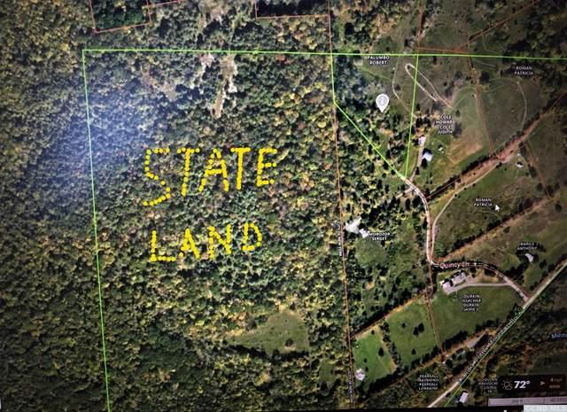 1 Quincy Lane, Conesville, NY 12076 (MLS #139242) :: Gabel Real Estate