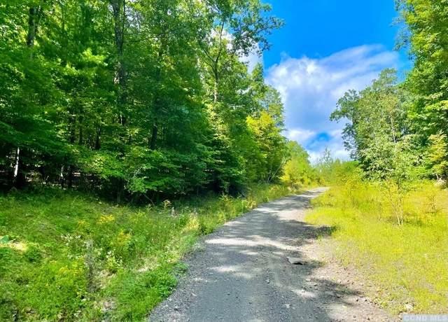0 Mountain Road, Coxsackie, NY 12051 (MLS #139244) :: Gabel Real Estate