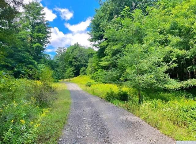 0 Mountain Road, Coxsackie, NY 12051 (MLS #139245) :: Gabel Real Estate