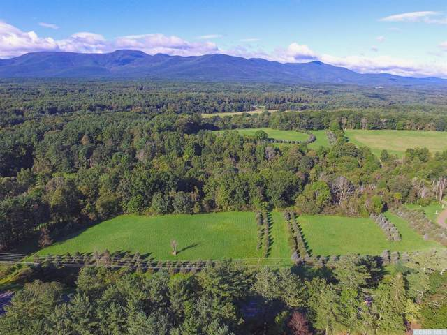 0 State Route 32, Cairo, NY 12413 (MLS #139263) :: Gabel Real Estate
