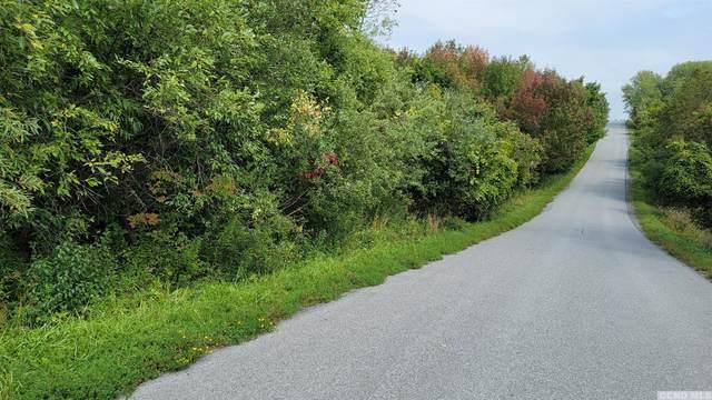 0 Peasley Road, Berne, NY 12023 (MLS #139335) :: Gabel Real Estate