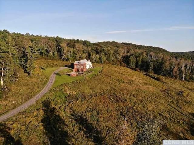 150 Harrington Drive, Austerlitz, NY 12017 (MLS #139356) :: Gabel Real Estate