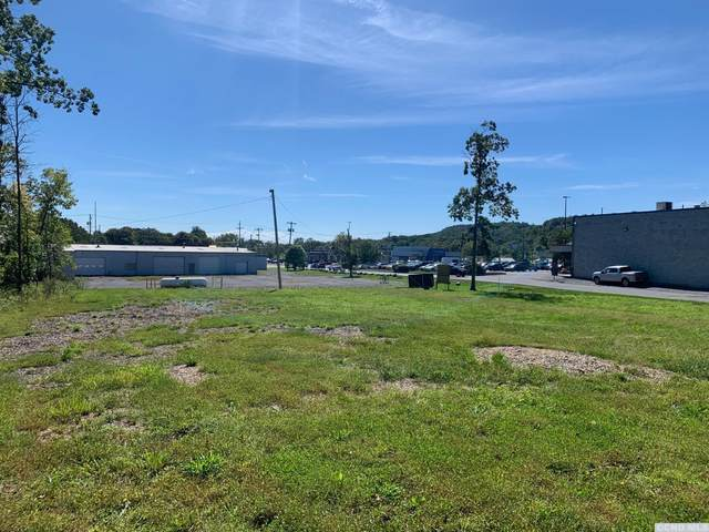 0 Cauterskill Ave, Catskill, NY 12414 (MLS #139390) :: Gabel Real Estate