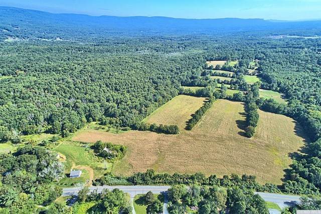 450 E Rt 17K, Wallkill, NY 12721 (MLS #139471) :: Gabel Real Estate