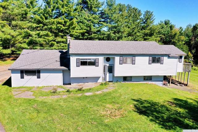 1674 Route 20, Durham, NY 12423 (MLS #139485) :: Gabel Real Estate