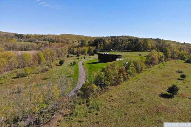 279 E Klein Road, Taghkanic, NY 12502 (MLS #139504) :: Gabel Real Estate