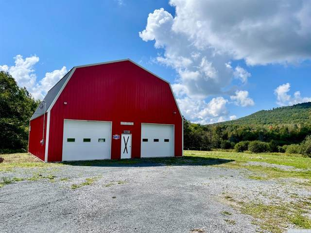 769 Mitchell Hollow Road, Windham, NY 12496 (MLS #139515) :: Gabel Real Estate