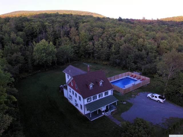 78 Lustig Road, Hunter, NY 12442 (MLS #139527) :: Gabel Real Estate