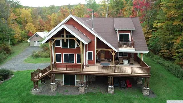 128 Mt Pisgah Road, Windham, NY 12496 (MLS #139539) :: Gabel Real Estate