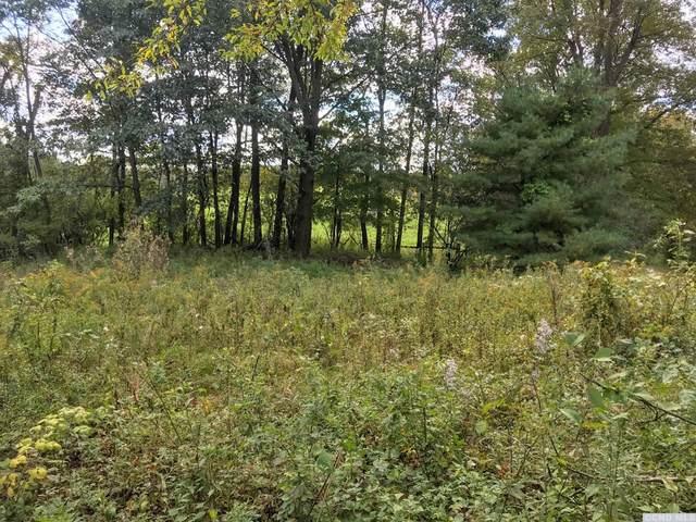 0 Bashford Rd, Chatham, NY 12184 (MLS #139541) :: Gabel Real Estate