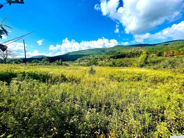 769 Mitchell Hollow Road, Windham, NY 12496 (MLS #139551) :: Gabel Real Estate