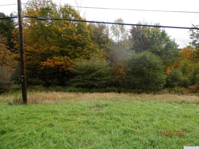 4153 E State Route 23, Windham, NY 12439 (MLS #139575) :: Gabel Real Estate