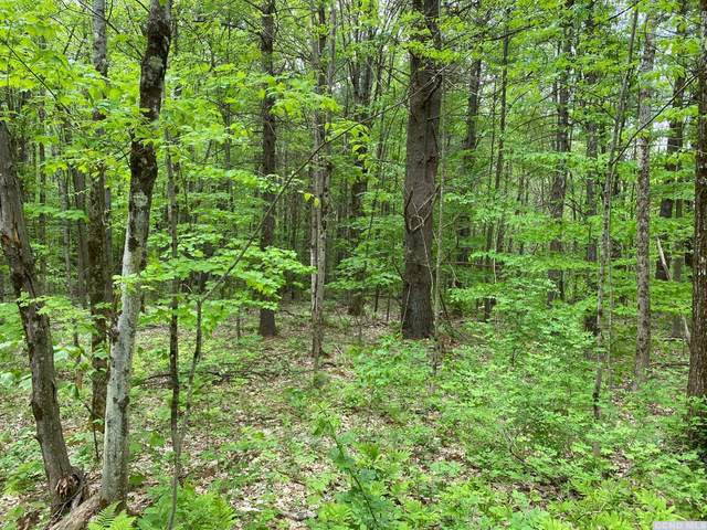 0 West Hill Road, New Lebanon, NY 12125 (MLS #139578) :: Gabel Real Estate