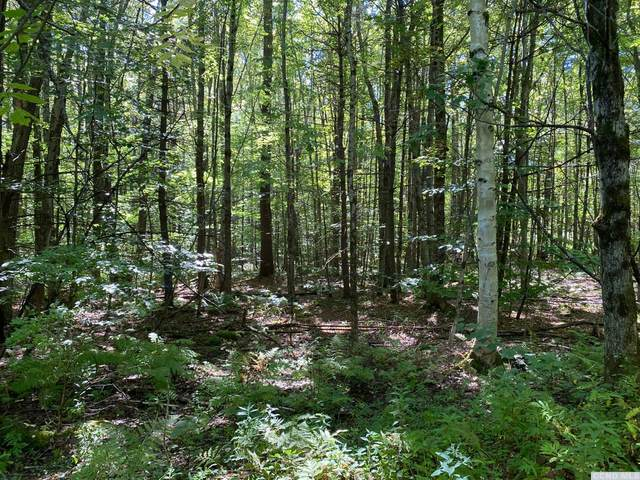 0 West Hill Road, New Lebanon, NY 12125 (MLS #139580) :: Gabel Real Estate