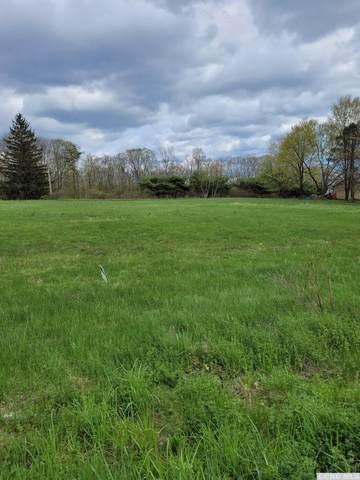 0 South Plattekill Road, Greenville, NY 12083 (MLS #139601) :: Gabel Real Estate