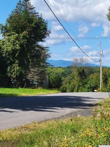 0 Drake Hill, Greenville, NY 12083 (MLS #139604) :: Gabel Real Estate