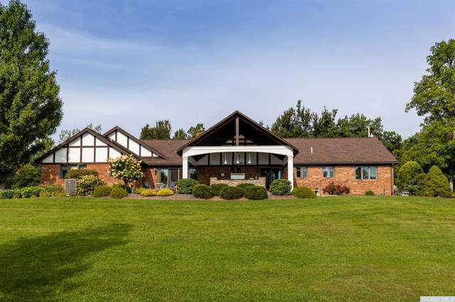 430 Red Mill Road, Freehold, NY 12431 (MLS #139639) :: Gabel Real Estate