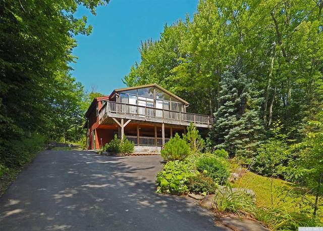239 Pine Ln, Hunter, NY 12442 (MLS #139648) :: Gabel Real Estate