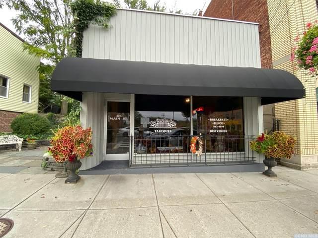 424 Main Street, Catskill, NY 12414 (MLS #139649) :: Gabel Real Estate