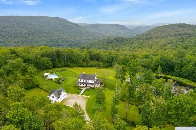 470 Harrington Drive, Austerlitz, NY 12017 (MLS #139650) :: Gabel Real Estate