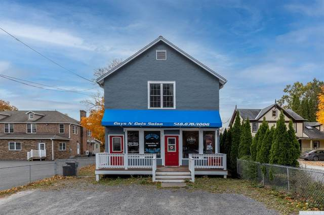 3317 Nys Route 23A, Palenville, NY 12463 (MLS #139652) :: Gabel Real Estate