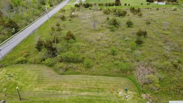 0 Hillside Drive, Athens, NY 12015 (MLS #139700) :: Gabel Real Estate